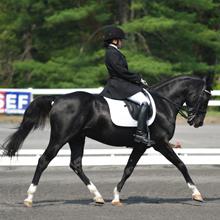Wendy Fryke and Lateran at 2012 USEF Para-Equestrian Dressage National Championship/ Paralympic Selection Trials by Lindsay Yosay McCall