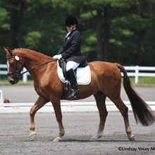 Kim Decker and Dasher's Destiny 2012 USEF Para-Equestrian Dressage National Championship/ Paralympic Selection Trials by Lindsay Yosay McCall
