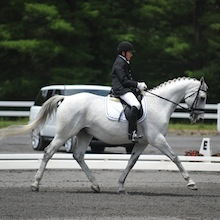 Dale Dedrick and Bonifatius 2012 USEF Para-Equestrian Dressage National Championship/ Paralympic Selection Trials by Lindsay Yosay McCall