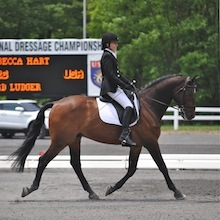 RebeccaHart and LordLudger at 2012 USEF Para-Equestrian Dressage National Championship/ Paralympic Selection Trials by Lindsay Yosay McCall