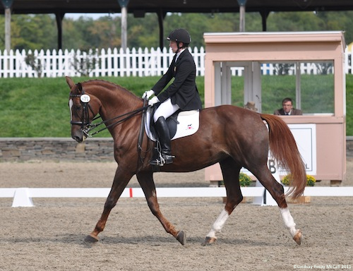 Erin Alberda and Pavalina at 2011 CPEDI3*in Saugerties New York
