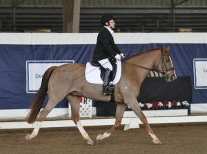 Donna Ponessa and Otto at the 2011 Dressage Affaire CPEDI3* in Del Mar, CA by Lindsay Y McCall