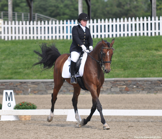 Eleanor Brimmer on Carino H at CPEDI3*in Saugerties, NY September 14-19, 2011 by Lindsay Y McCallEleanor Brimmer on Carino H at CPEDI3*in Saugerties, NY September 14-19, 2011